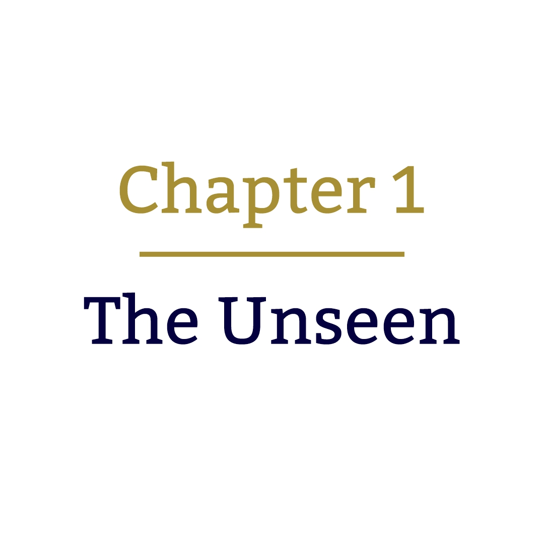 Unseen cover